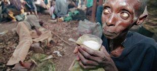 Dünyadan Plutzer Ödüllü Fotoğraflar