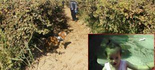 Son Dakika: Günlerdir aranan kayıp 4 yaşındaki çocuğun cansız bedeni bulundu