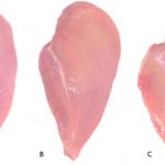 Tavuk Göğsünün Üzerinde Bunu Görürseniz Onu Kesinlike Almayın