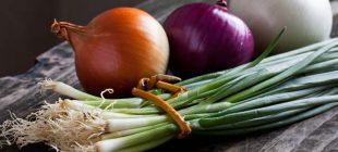Hangi soğan hangi yemekte kullanılmalı?