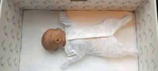 Finlandiyalı Bebekler Kutuda Uyuyorlar. Nedenini Biliyor Musunuz? Herkes Bunu Yapmalı!