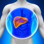 Karaciğer Hastalığına İyi Gelen 10 Gıda ve Takviyeler