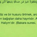 Mustafa Ceceli'den eleştirilere ayetli yanıt