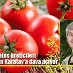Domates üreticileri Canan Karatay'a dava açıyor