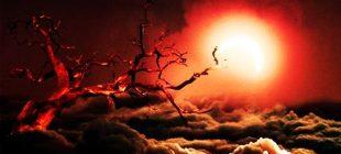 Ölümden Önceki 30 Saniyede Yaşananları Öğrenmek İster Misiniz?