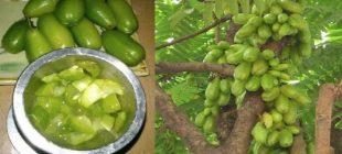 Karambola Meyvesi Faydaları