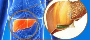 7 Adımda Fazla Kilolarınızı Vererek Karaciğerinizdeki Yağlardan Tamamen Arınabilirsiniz