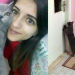 Antalya'da kazada ölen genç kızın kedisi kapısından ayrılmıyor
