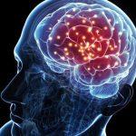 ABD'li bilim insanlarının son araştırmaları, 'ruh' değil ama pekala bir 'beyin ikiziniz' olabileceğini gösteriyor.