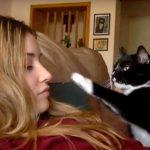 Kedi Sahibine Tuhaf Şekilde Dokunmaya Başladı – Sahibi Ne İstediğini Anlayınca Gülmeden Edemedi