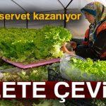 Endonezya'daki Sistemi Türkiye'de Yaptı Şimdi Servet Kazanıyor