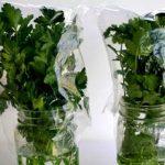 Bu 5 Pratik Yöntemi Öğrendikten Sonra,Yeşilliklerinizi Hep Böyle Muhafaza Edeceksiniz…