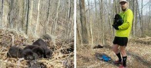 Ormanda Koşarken Siyah Bir Yığın Gördü – Yakınlaşıp Gerçeğin Farkına Varınca Dondu Kaldı