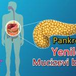 Pankreasınızı Yenileyen Mucizevi Besinler