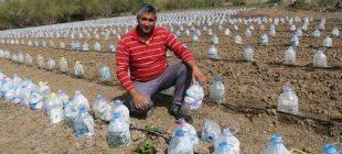 Yozgatlı vatandaştan bir ilk! Burası 'pet şişe tarlası' değil…