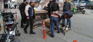 Hatay'da yorgunluğa dayanamayan at bayıldı, sahibi gazetecilere saldırdı