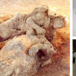 Sapkınlıkları Yüzünden Taş Kesilen İnsanların Şehri: Pompei