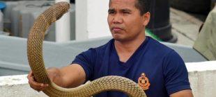 'Yılanlarla iletişime geçerek' dünya çapında büyük bir üne kavuşmuştu…