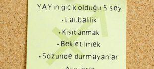 BURÇLARIN GICIK OLDUKLARI 5 ŞEY
