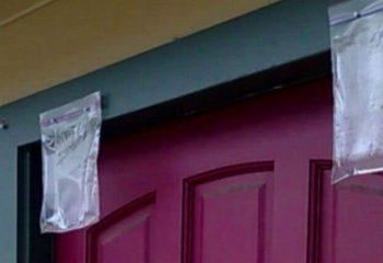 İşte Bu Yüzden Yazın Kapınızın Üstüne Plastik Torba Asmalısınız