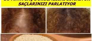 Bu 3 Doğal Maske Saç Dökülmelerini Durdururken,Saçlarınızı Işıl Işıl Parlatacak…