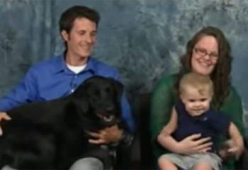 Bakıcı Tarafından Şiddete Uğrayan Çocuk Derdini Kimseye Anlatamayınca Devreye Evin Köpeği Girdi